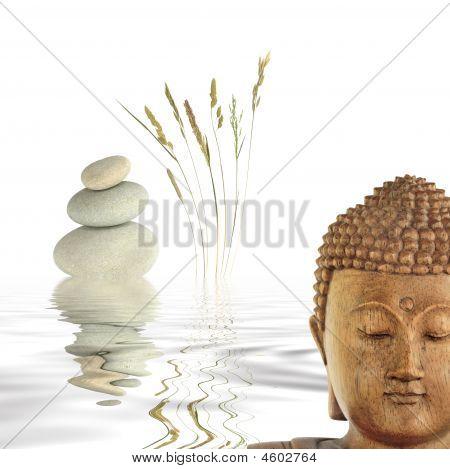 Buda em contemplação