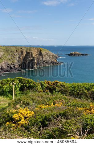 Wales Coast Path Caerfai Bay Pembrokeshire Wales UK