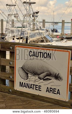 Manatee notice at a Florida dock
