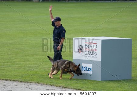Police Dog Competition