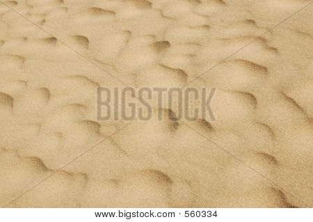 Sand Sculputure