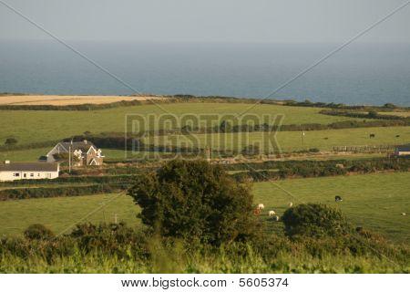 irish farmland by the ocean