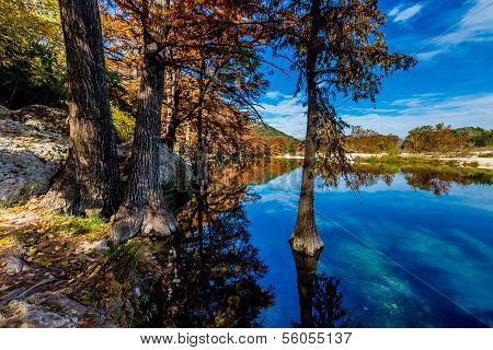 Bright Fall Foliage on the Frio River in Texas