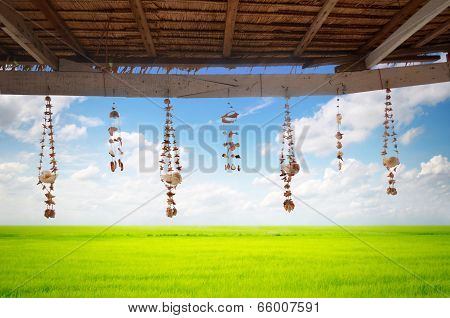 Seashell Decoration String Under The Roof On Meadow Background