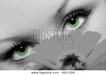 Woman With Beautiful Green Eyes