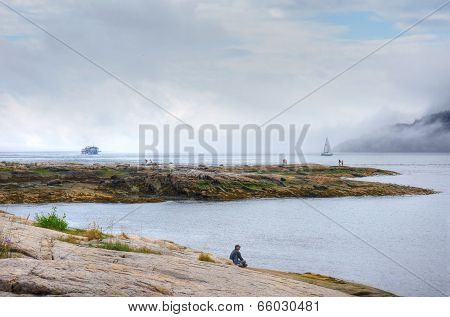 Foggy Day At The Fjord