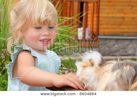 Little Girl Feeds Guinea Pig In Courtyard Near House