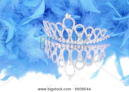 Tiara And Blue Feather Boa