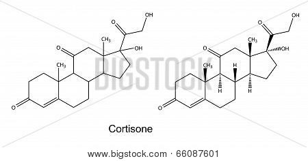 Structural chemical formulas of cortisone, 2D illustration, vector, isolated on white background poster