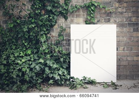 Blank poster and green leafs
