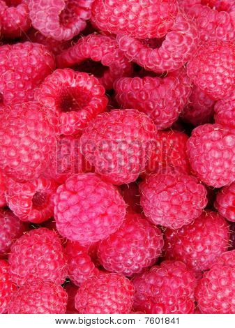 Berries  Raspberry