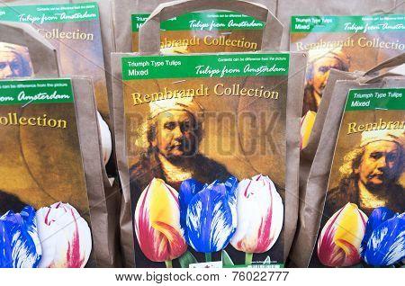 Bulb bags with the portrait of the painter Rembrandt van Rijn.