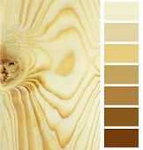 closeup of the plank timeber color chart selection palette poster