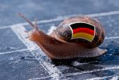 finish line winning of a snail with the colors of Germany flag poster