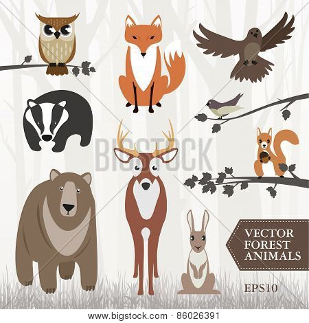 illustrated forest animals
