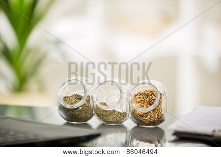 Herbal medicine - jars of herbs on the table. Homeopathy