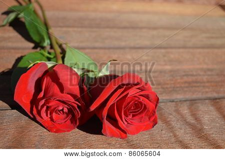 Two Red Roses On Wood