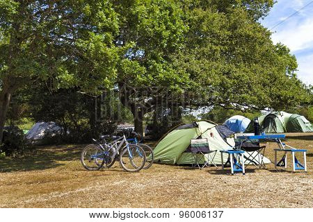 Family tents in camping site under the trees