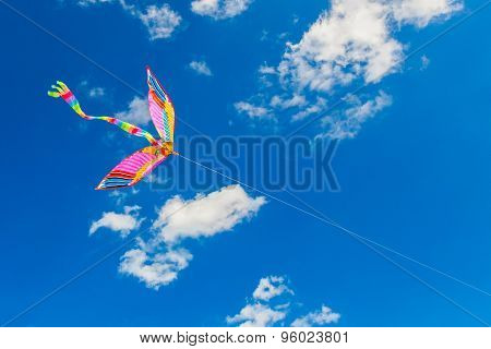 Rainbow Kite Flies In The Blue Sky