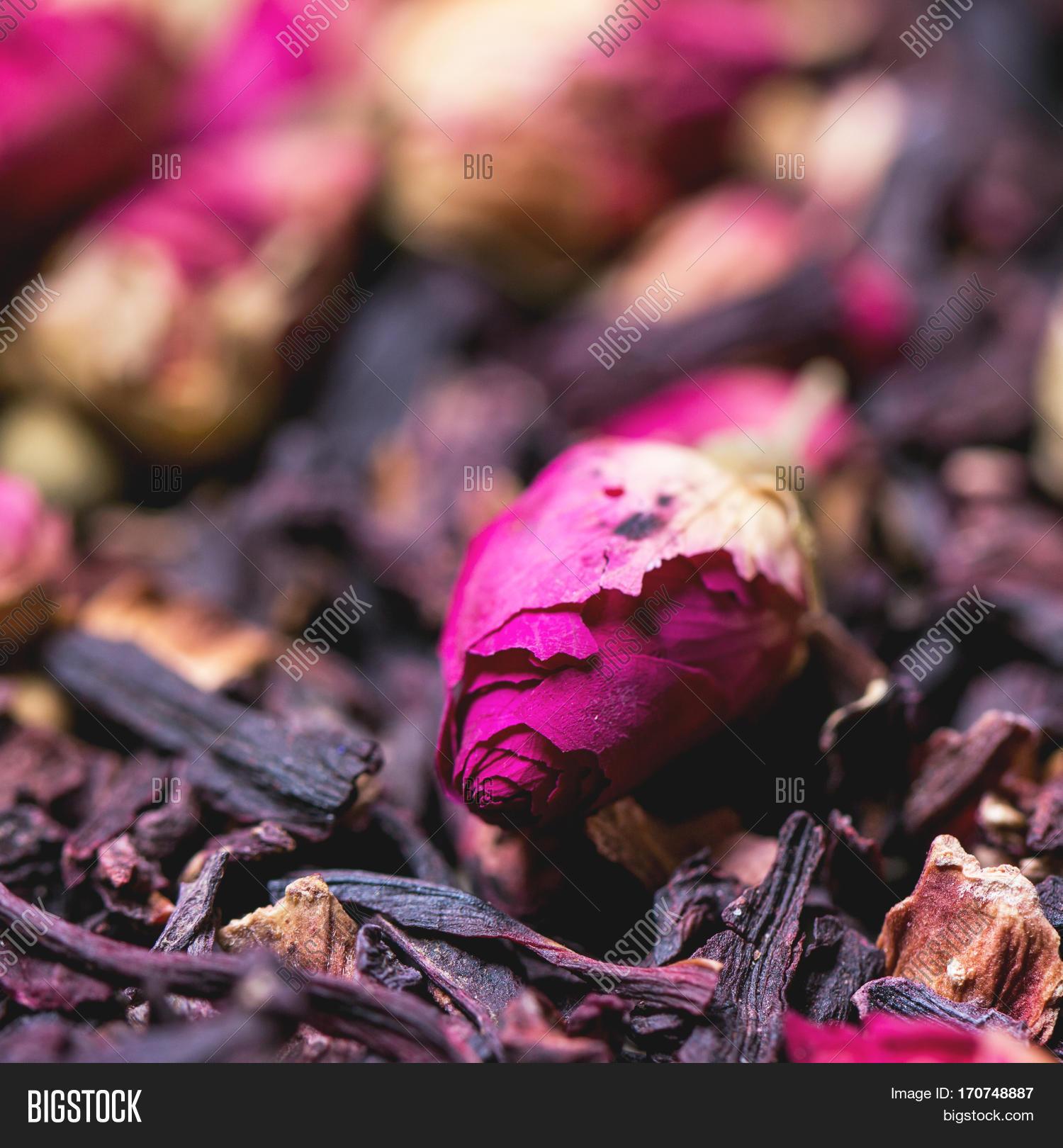 Tea Roses Dried Image Photo Free Trial Bigstock