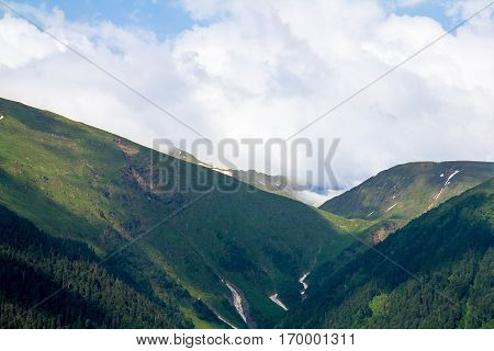 wildlife gorge in the mountains forested with cleft and snow silence and coast