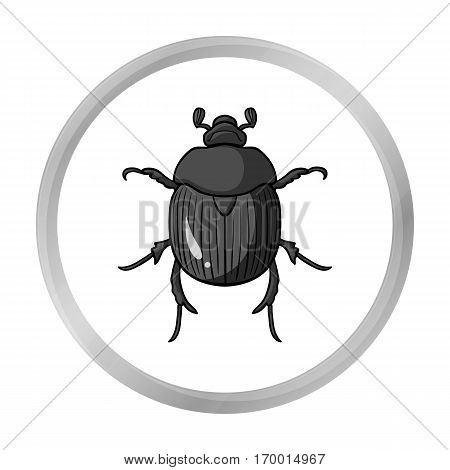 Dor-beetle icon in monochrome design isolated on white background. Insects symbol stock vector illustration.