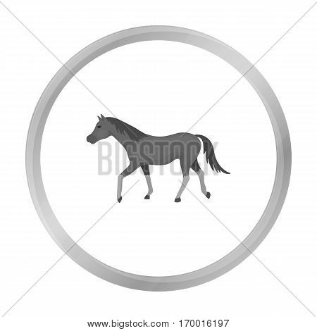 Horse icon in monochrome design isolated on white background. Hippodrome and horse symbol stock vector illustration.