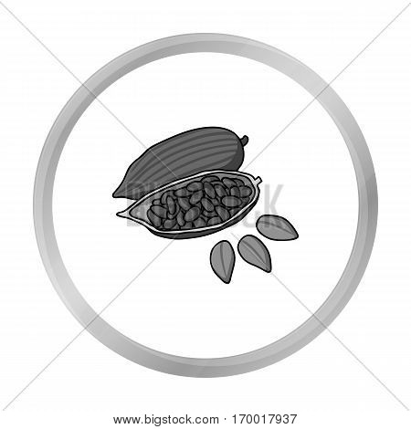 Roasted cacao beans icon in monochrome style isolated on white background. Herb an spices symbol vector illustration.
