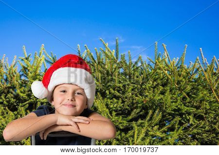 Background - green hedge firs. Very handsome eight years old boy in a red cap of Santa Claus smiling