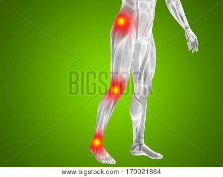 Conceptual 3D illustration of human man anatomy lower body health design, joint articular pain, ache injury on green background for medical, fitness medicine bone care hurt osteoporosis arthritis body