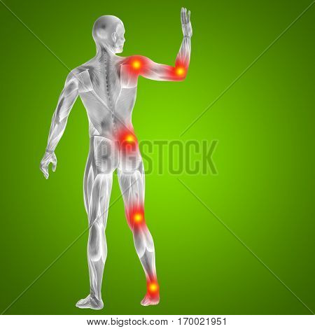 3D illustration of human or man with muscles and articular or bones pain. A male on green background for health, medicine, medical, biology, osteoporosis, arthritis, joint, disease inflammation ache