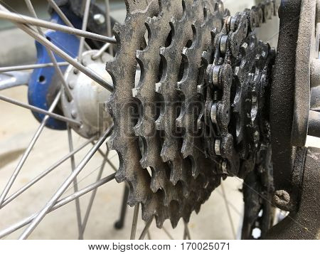 Dirty bicycle gears at rear wheel with chain