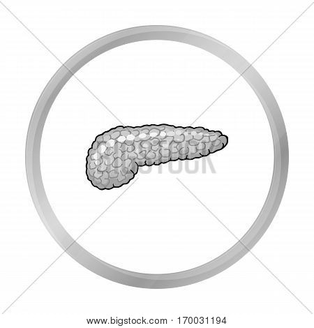 Human pancreas icon in monochrome style isolated on white background. Human organs symbol vector illustration.