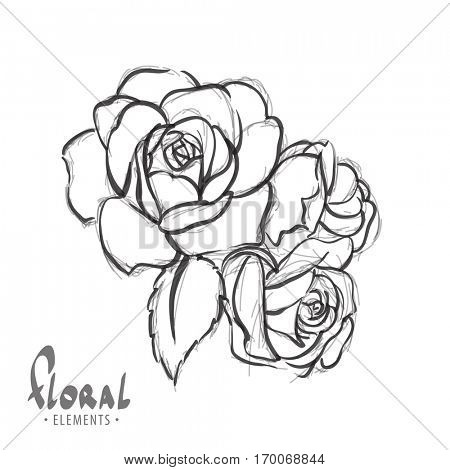 Roses on a white background with the ability to colorize