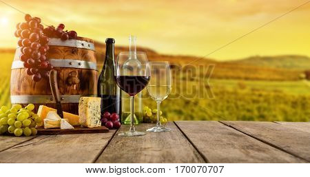 Red and white wine served on wooden planks with keg, vineyard on background, copyspace for text