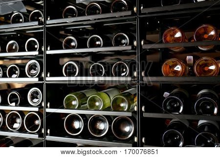 Shelving with different wine bottles in winery shop