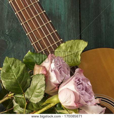 A square photo of a guitar neck with tender pink roses, on a dark wooden background with copyspace