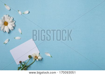 Spring top view composition: business / credit / visiting card mockup white flowers with green stem and yellow hearts cattered petals around. Sky blue background with copy space for text. Flat lay.