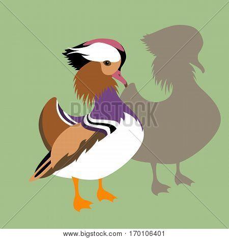 duck vector illustration style Flat set silhouette