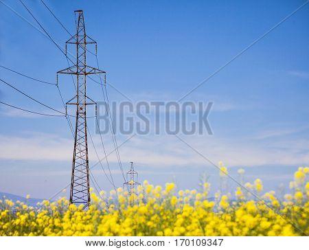 Power lines pylon field