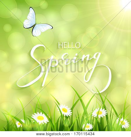 Sunny spring background with a butterfly flying above the grass and flowers, lettering Spring with bokeh light and sun beams, illustration.