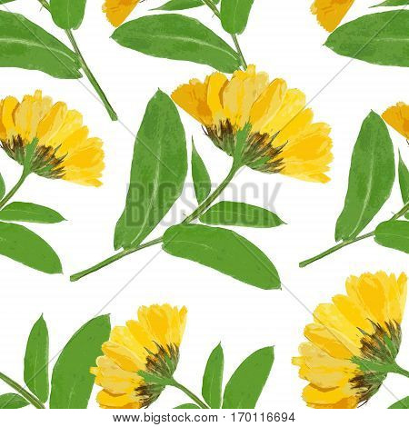 Marigold calendula officinalis. Colorful texture of pressed dry flowers. Seamless pattern for continuous replicate. Beautiful photo collage.