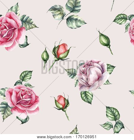 Watercolor background. Rose flower seamless pattern. hand drawn backdrop illustration. Greeting object art.