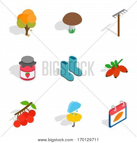 Fall icons set. Isometric 3d illustration of 9 fall vector icons for web