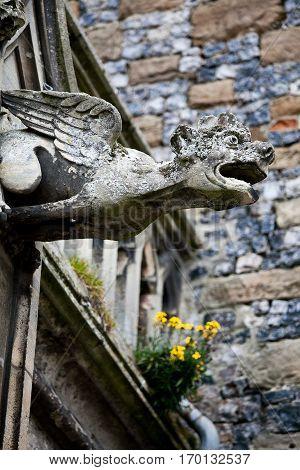 stone Gargoil representating a strange winged monster