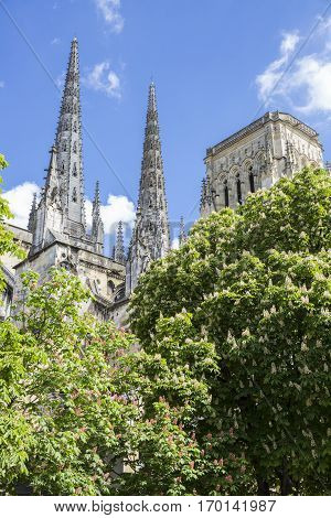Gothic bell tower or spire of Saint-André cathedral, behing green tree leaves and with blue sky background, Bordeaux, France
