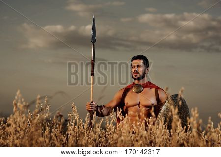 Handsome and confident warrior wearing in red cloak and armor like spartan posing in field with weapon. Brunet soldier with bare torso going in attack with bronze shield. Looking at horizon.