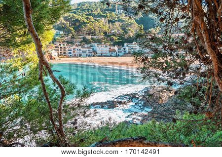 Spain. The coastline of Costa Brava La Sera Begur. Nice view of the azure sea. A view through fir branches.