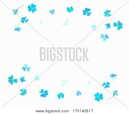 Painted pattern on a white background leaf shamrock. Double border of shamrocks. Repainted in blue over a white background