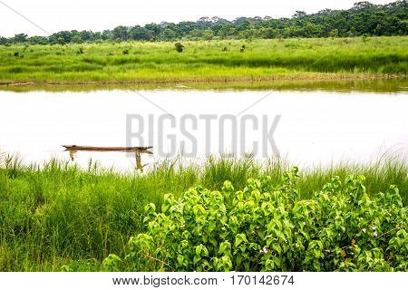 Green Grass Field with River in the middle.